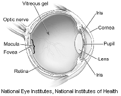Macular Hole/Pucker